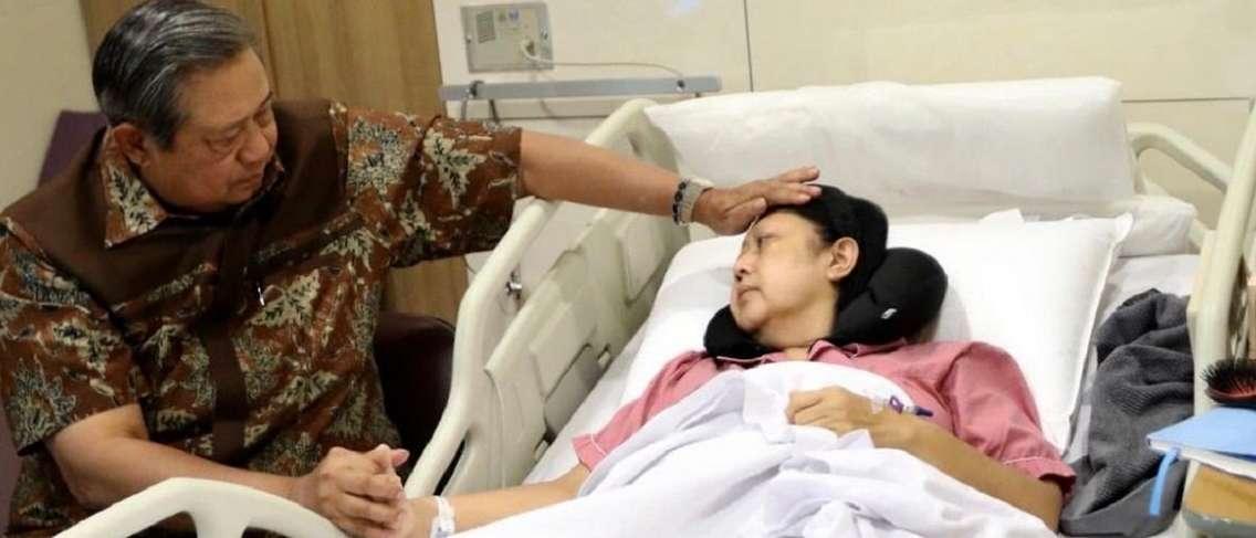 4 Jenis Leukemia pada Orang Dewasa, Seperti yang Dialami oleh Ani Yudhoyono